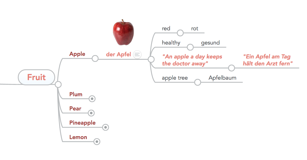 Food vocabulary mind map