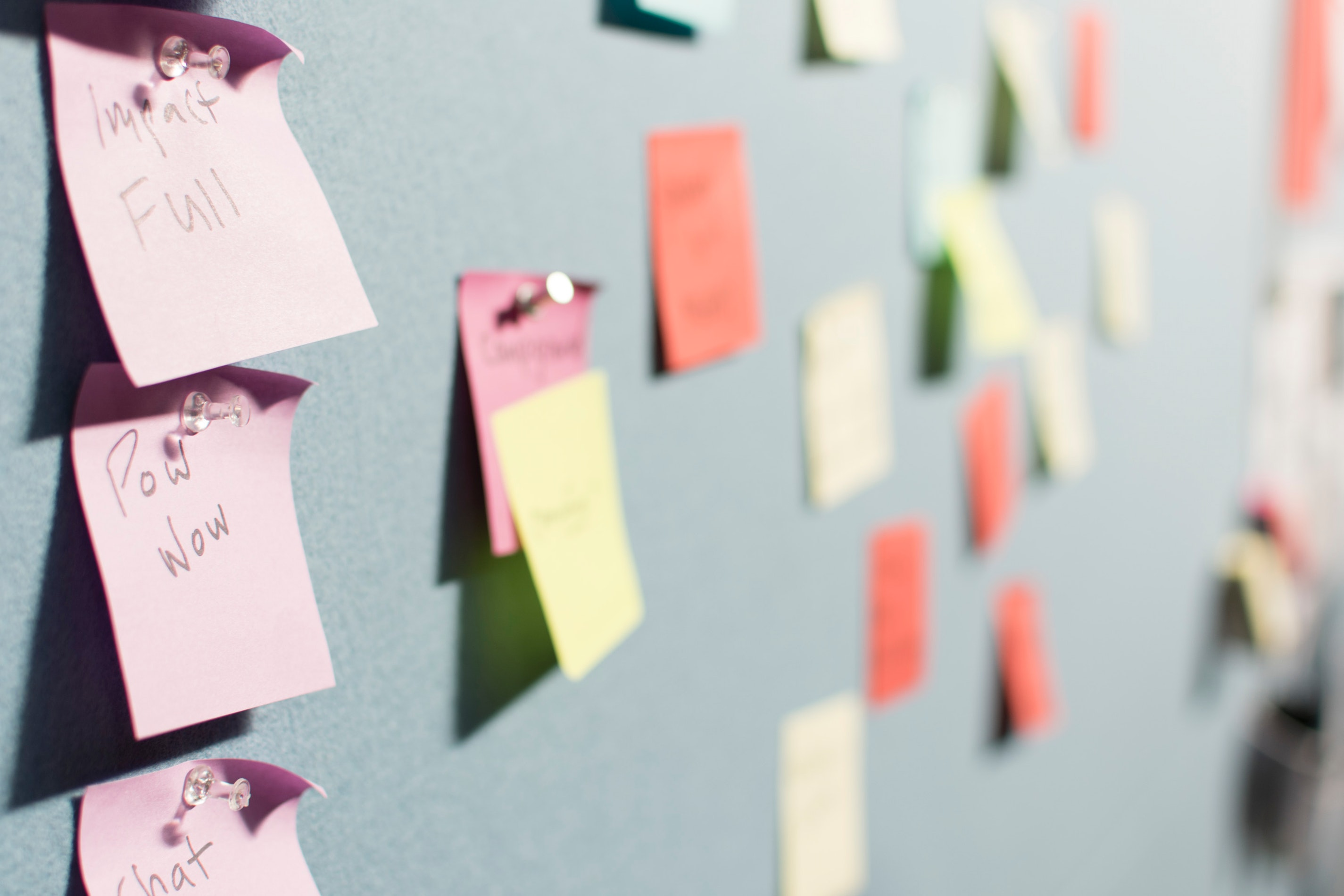 agile project management guide customer feedback
